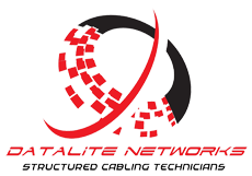 Datalite Network Official logo